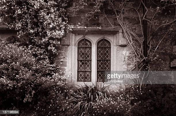 window - gothic stock pictures, royalty-free photos & images