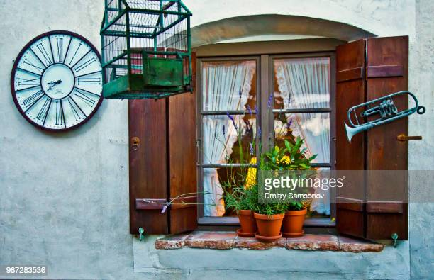 window - chelsea flower show stock pictures, royalty-free photos & images