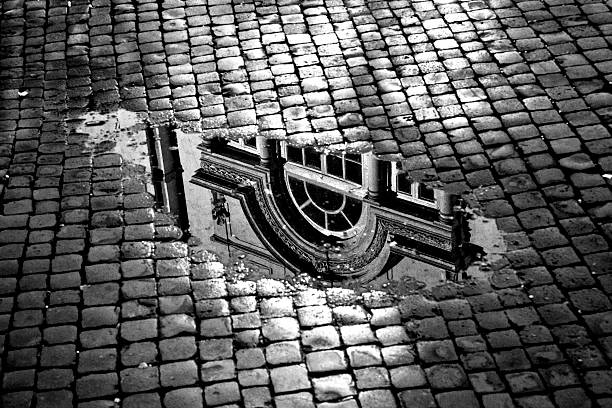 Window Reflection in a Puddle