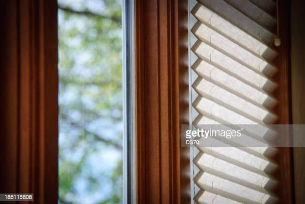 窓のシェード