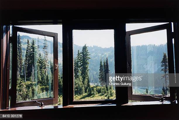 Window, Trees and Mountain