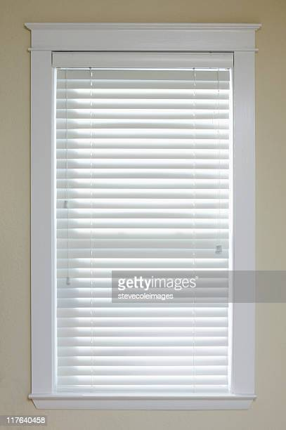 Window with Blinds