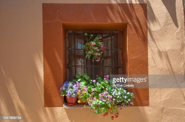 window with colorful flowers - hanging basket stock pictures, royalty-free photos & images