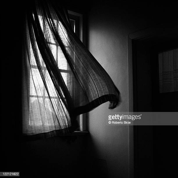 Window with curtain moving