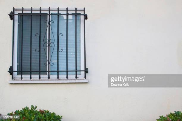 Window With Security Bars