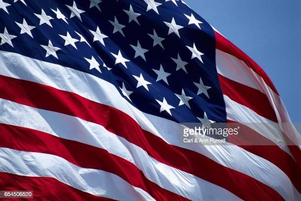 Wind-Rippled American Flag