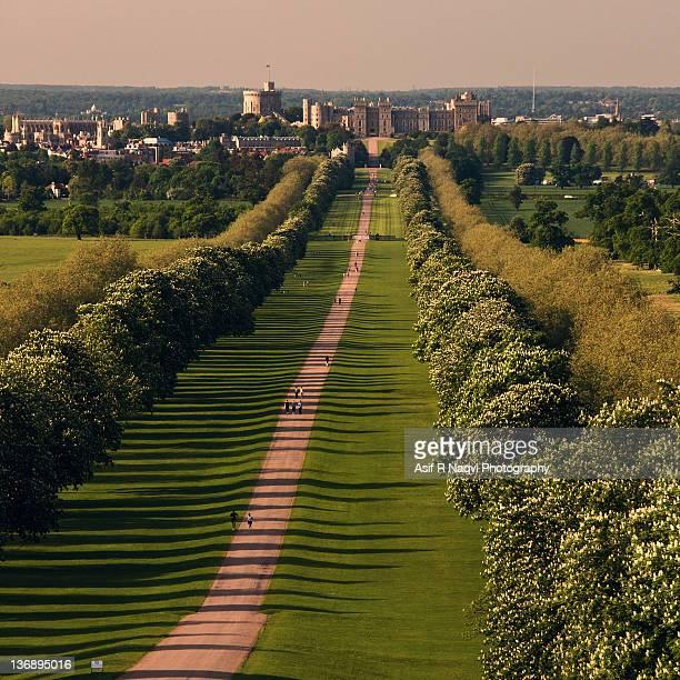 Windsor in Great Park