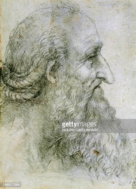 Windsor Windsor Castle Royal Library Head of an elderly man seen in profile by Leonardo da Vinci drawing 12499