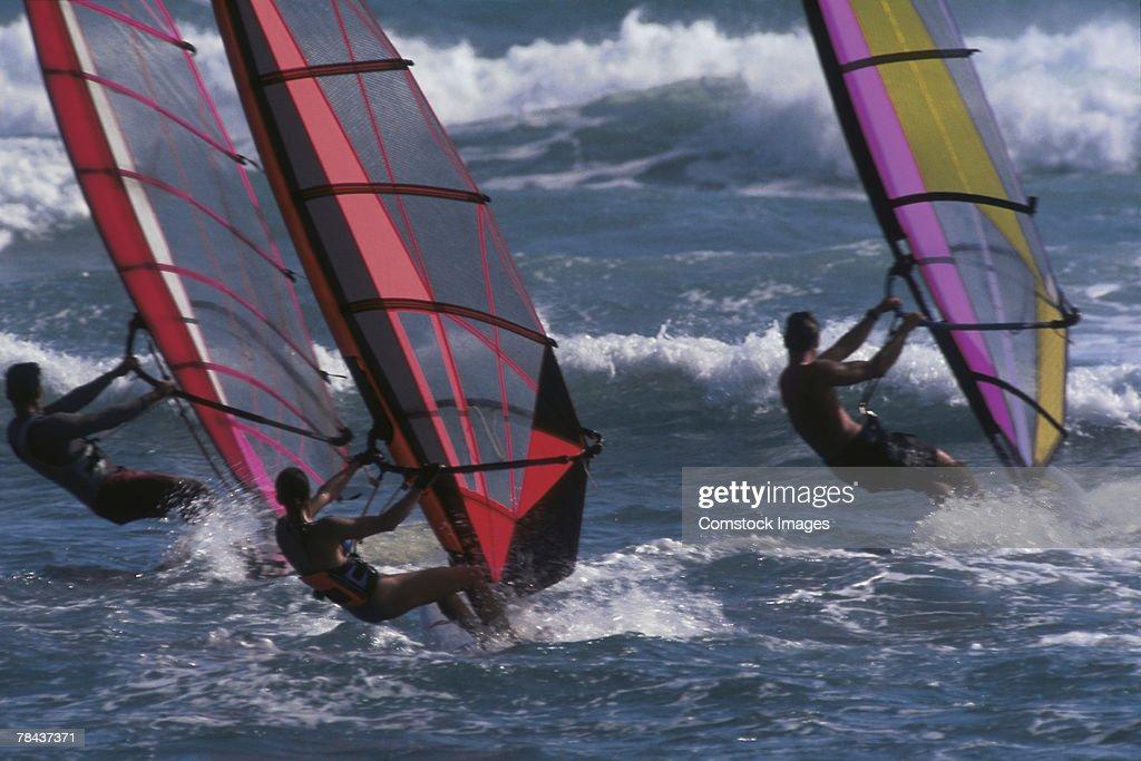 Windsurfers : Stock Photo