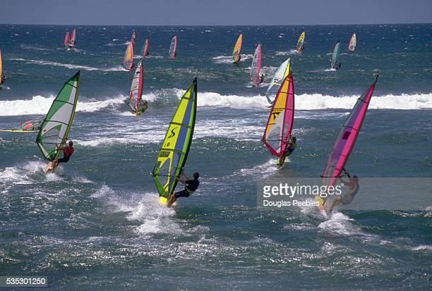 Windsurfers Riding Colorful Sailboards off Diamond Head