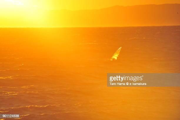 A windsurfing sailing on sunset Sagami Bay in Kanagawa prefecture in Japan
