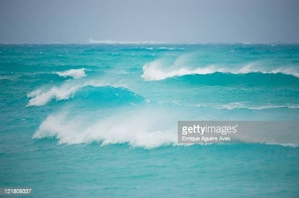 Windswept clear blue waves, Midway Atoll, Northwestern Hawaiian Islands
