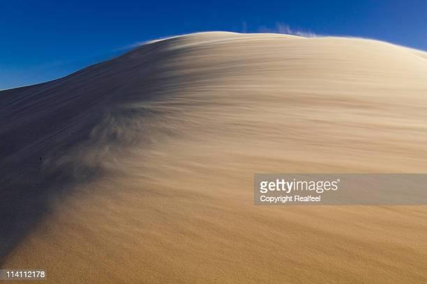 Windswept Dune