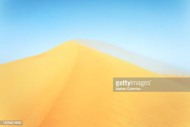Windswept sand dune in the desert, Abu Dhabi, UAE