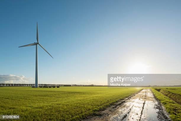 Windturbine in field, Zeewolde, Flevoland, Netherlands, Europe
