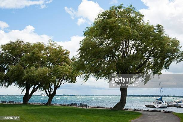 windy day on the lake ontario - kingston ontario stock photos and pictures
