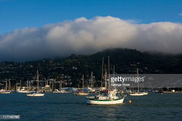 A windy foggy day with clouds rolling across the Sausalito Marina keeps most of the boats at their berth on June 11 2011 in Sausalito California The...