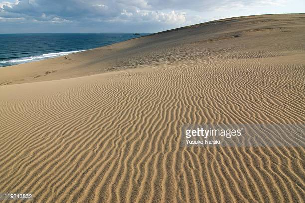 windy morning - tottori prefecture stock photos and pictures