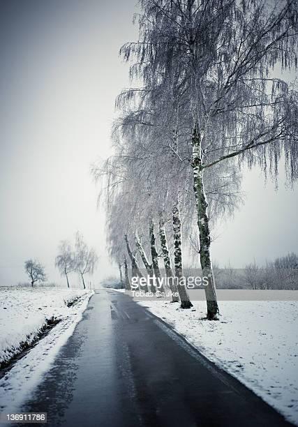 windy winter road - tobias gaulke stock-fotos und bilder