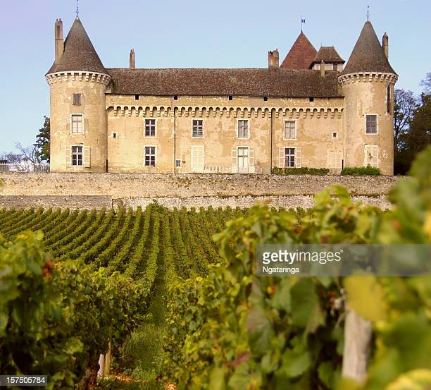 wine and castle - chateau stock pictures, royalty-free photos & images
