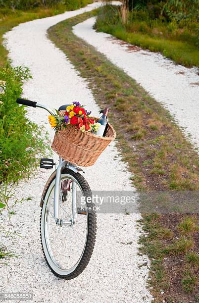 wine and flowers in bicycle basket - nantucket stock pictures, royalty-free photos & images