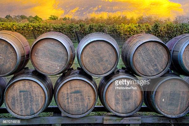 wine barrels in the sunset - williamsburg virginia stock pictures, royalty-free photos & images