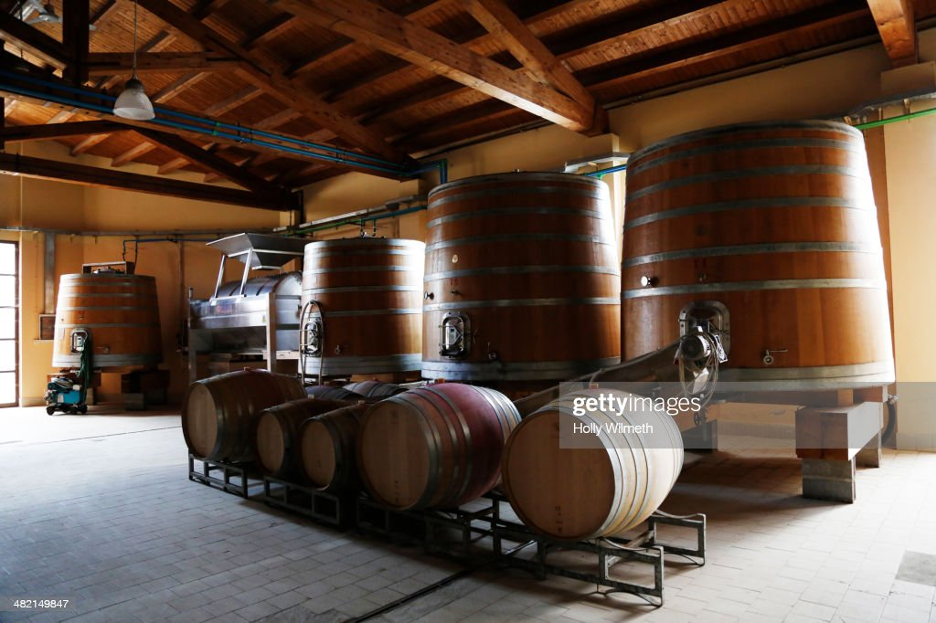 Wine barrels in vineyard storehouse : Stock Photo