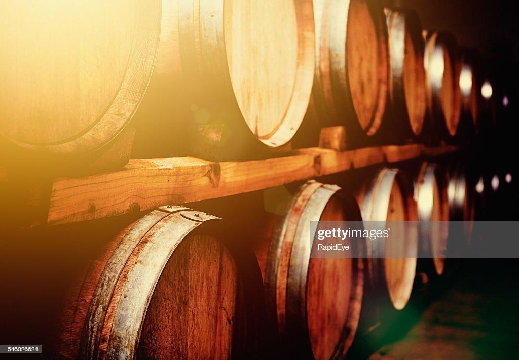 stacked oak barrels maturing red wine. Wine Barrels Stacked In Cellar Mellow Golden Light Oak Maturing Red