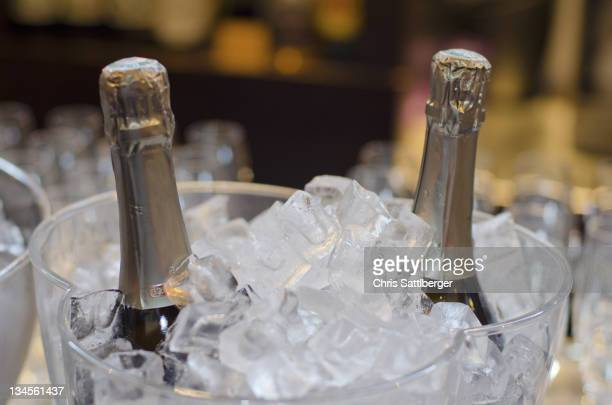 Wine bottles in ice bucket in restaurant