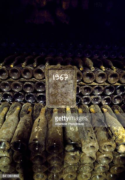Wine Cellar at Chateau Mont-Redon