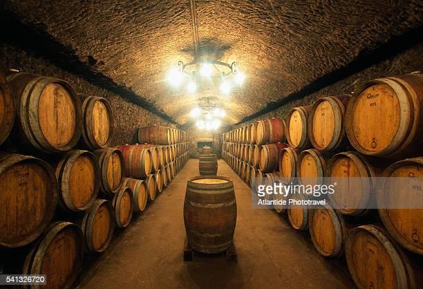 Wine Cellar at La Carraia Winery in Orvieto
