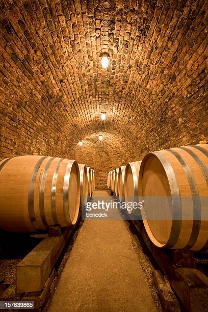 Wine Cellar with large barrels