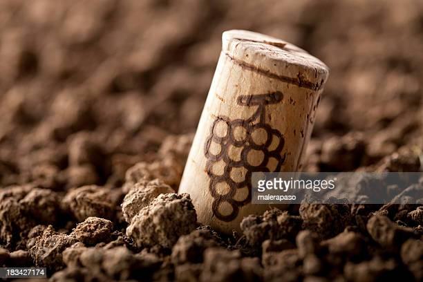 Tappo del vino