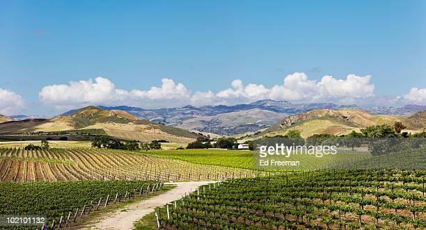 Wine Country East of Santa Barbara