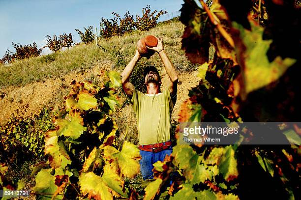 Wine from Priorat Gratallops Tarragona Here the wine yards of clos Mogador and Rene Barbier