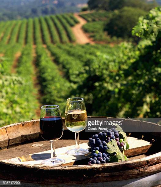 wine glasses and grapes - vineyard stock pictures, royalty-free photos & images