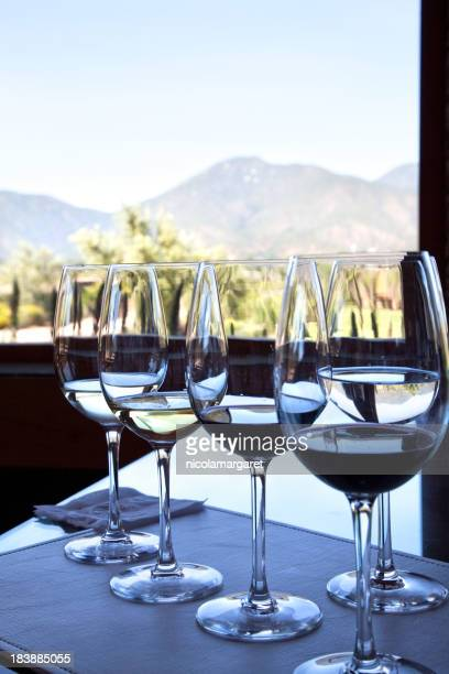 Wine glasses with a vineyard in the background