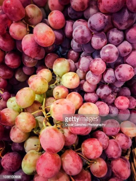 Wine grape fruit