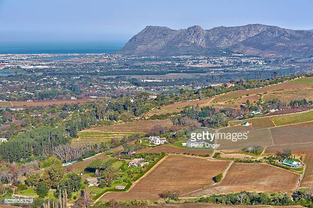 wine growing area of constantia - constantia stock pictures, royalty-free photos & images