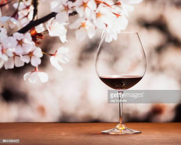 wine in cherry blossoms background - cabernet sauvignon grape stock photos and pictures