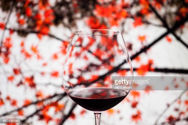 wine in maple leaf background - cabernet sauvignon grape - fotografias e filmes do acervo