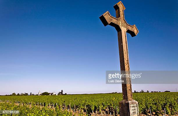 wine in pauillac - wineyard stock photos and pictures