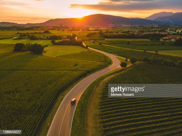 wine road - italia stock pictures, royalty-free photos & images
