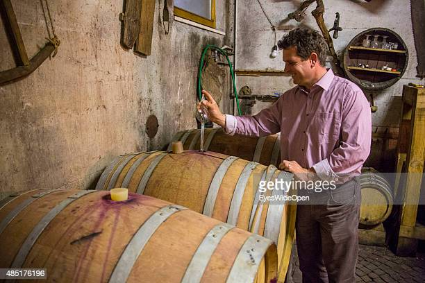 Wine tasting at the Organic farm and winery St Quirinus with owner and apple farmer Robert Sinn on April 13 2013 near Merano Vinschgau South Tyrol...