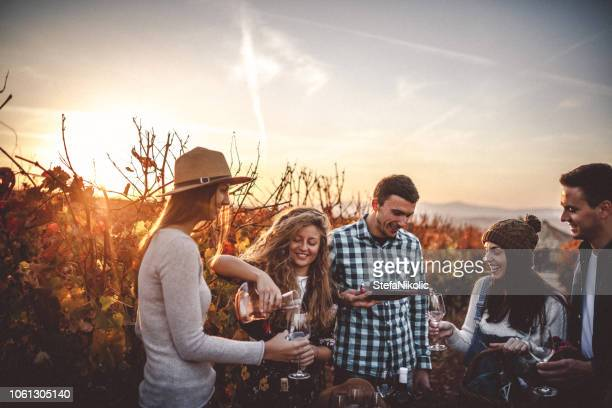 wine tasting - winery stock pictures, royalty-free photos & images