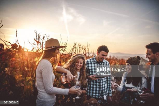 ワインの試飲 - ワイナリー ストックフォトと画像