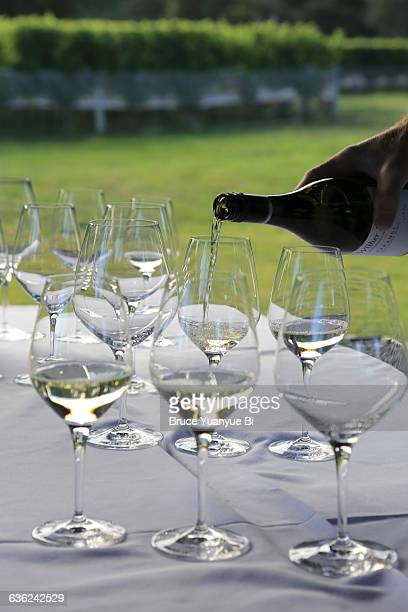 Wine testing in a wetlands vineyard