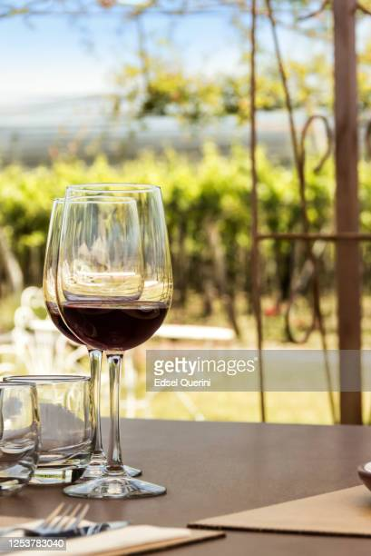 wine tourism, vineyards, landscapes and glasses in open air. - california stock pictures, royalty-free photos & images