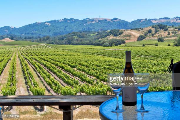 Wineglass On Table Against Farm