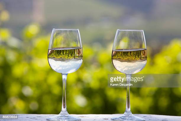 Wineglasses with vineyard reflection, South Africa